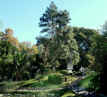 Central island Jardin Japones Buenos Aires