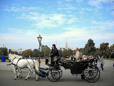 Vienna horse carriage ride Austria