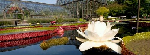 Longwood Gardens Philadelphia Yhdysvallat.