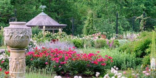 Morris Arboretum Philadelphia Yhdysvallat.