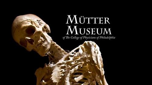 Mütter Museum Philadelphia Yhdysvallat.