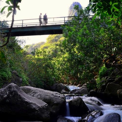 Iao Valley osavaltiopuisto Havaiji Yhdysvallat.
