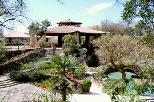 Japanese Tea Garden San Antonio Texas Yhdysvallat.
