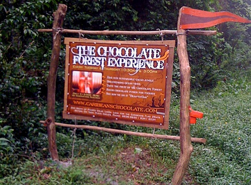 Caribeans Chocolate Forest Experience Costa Rica.