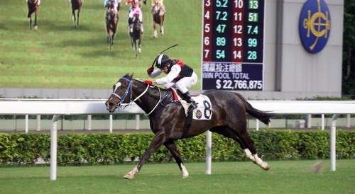 Happy Valley Racecourse Hong Kong.