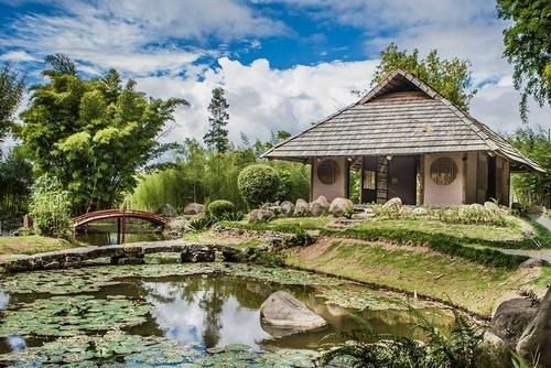 Lankesterin kasvitieteelliset puutarhat Costa Rica.