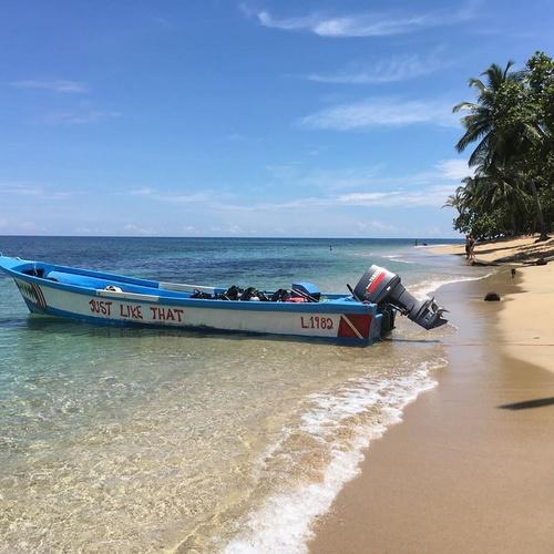Reef Runner Divers Costa Rica.