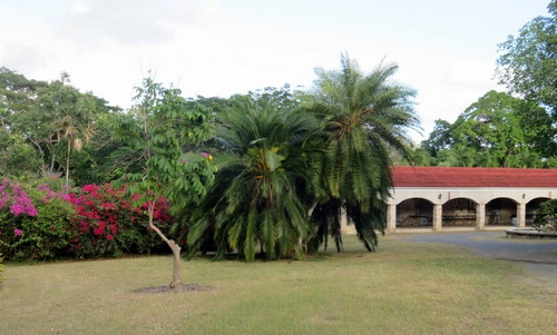 St. George Village Botanical Garden Yhdysvaltain neitsytsaaret.